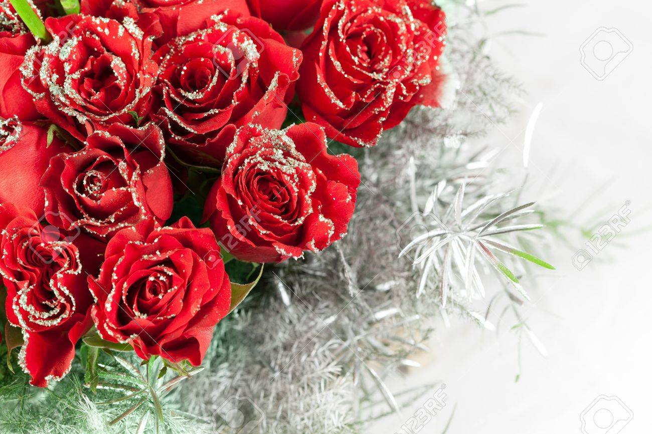Beautiful Red Rose Flowers With Sparkle Particles Stock Photo ...