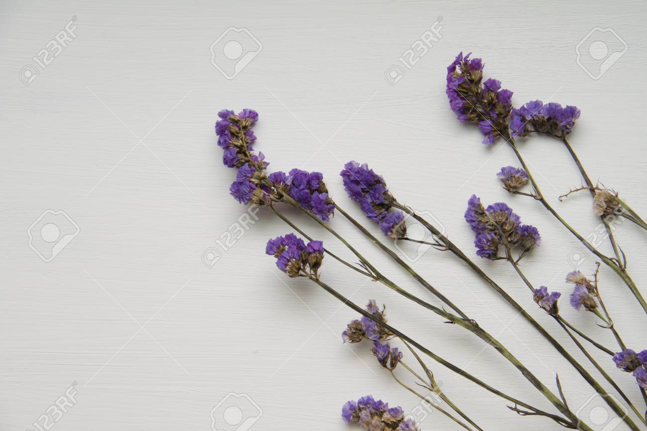Statice Purple Flower On Wooden Floor With White Background Stock