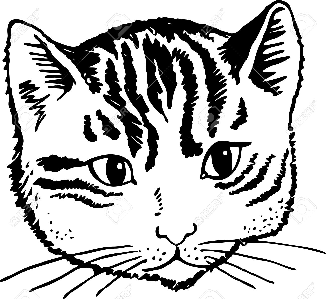 simple black and white illustration of a cats cute face stock