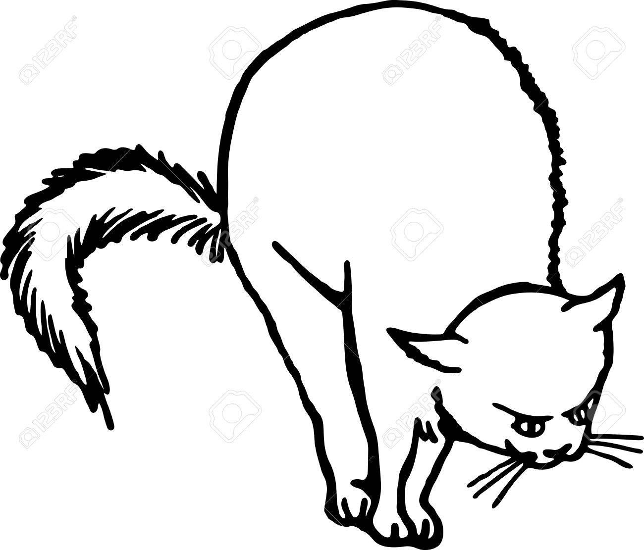 Dessin Au Trait Noir simple dessin au trait noir et blanc d'un chat effrayé. banque d
