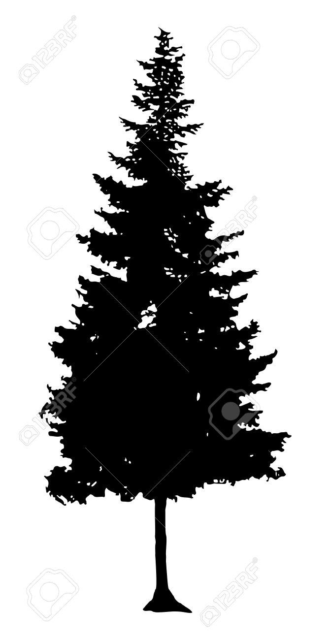 Pine Tree Silhouette - 52106618
