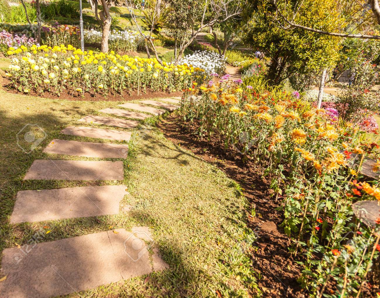 Stone Path Winding In Spring Flower Garden With Blossoming Flowers ...