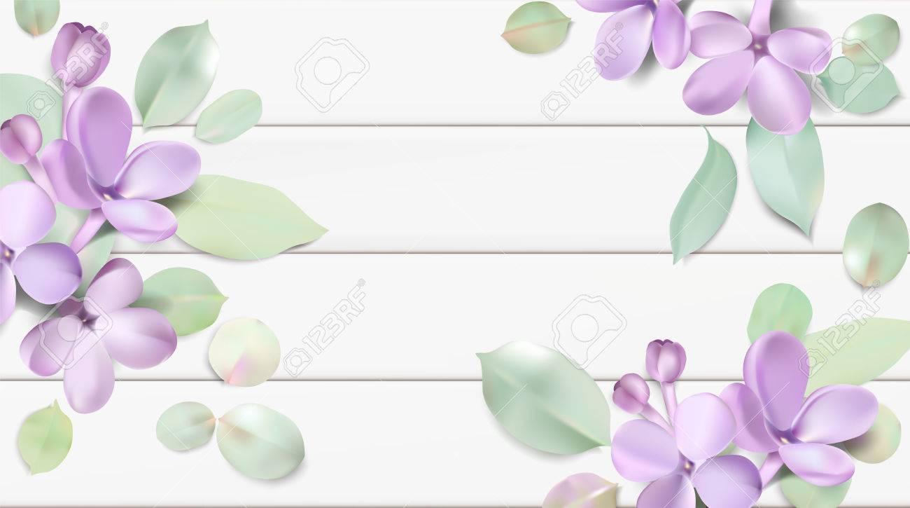 Soft Pastel Color Floral Background Purple Lilac Flowers And - Color-lila-pastel
