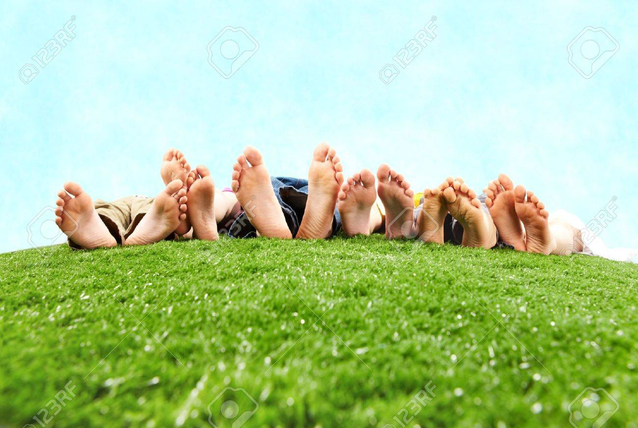 Image of several legs lying on the grass and resting Stock Photo - 6894206