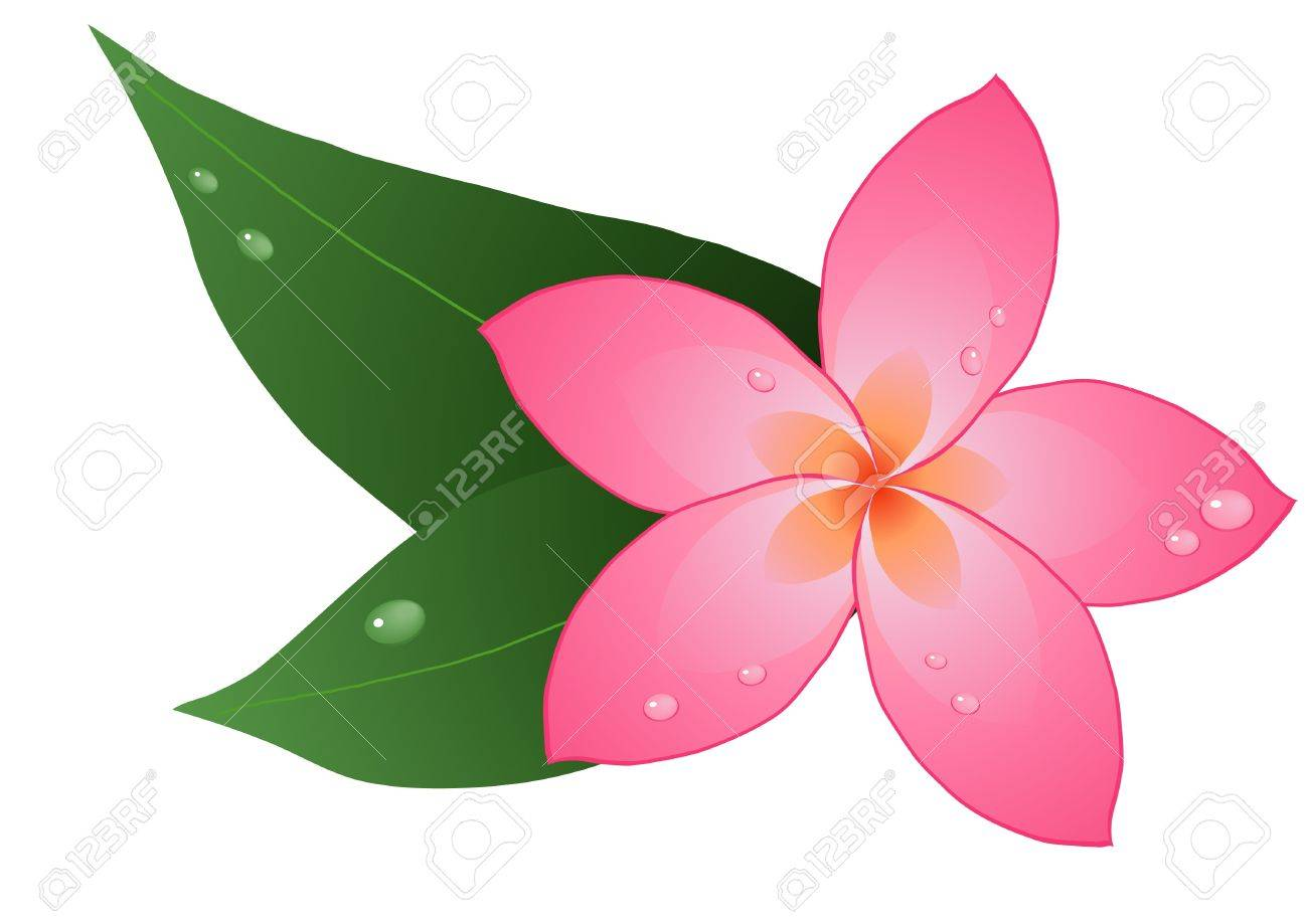 One Flower Clipart Vector - illustration of one