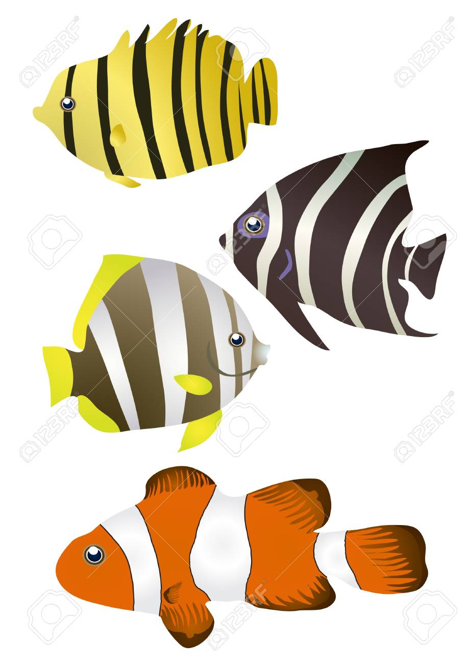 illustration of stripy tropical fishes Stock Vector - 9727782
