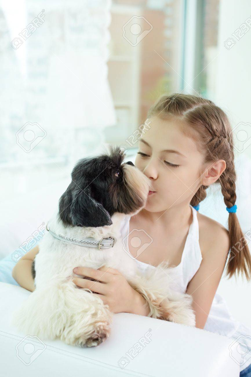 Portrait of happy girl kissing shih-tzu dog at home Stock Photo - 13888785