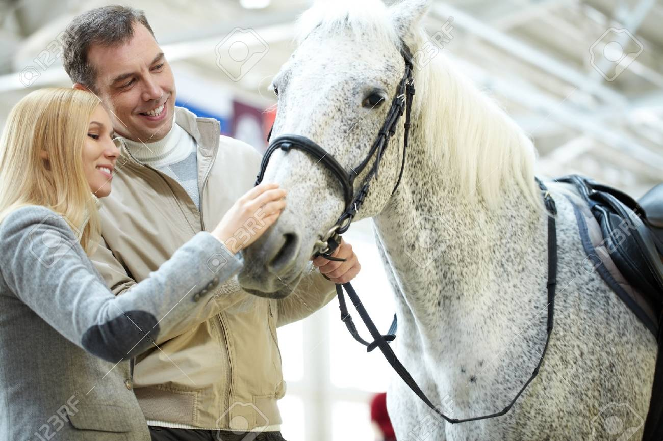 A Young Couple Looking At A Cute White Horse Stock Photo Picture And Royalty Free Image Image 64023129