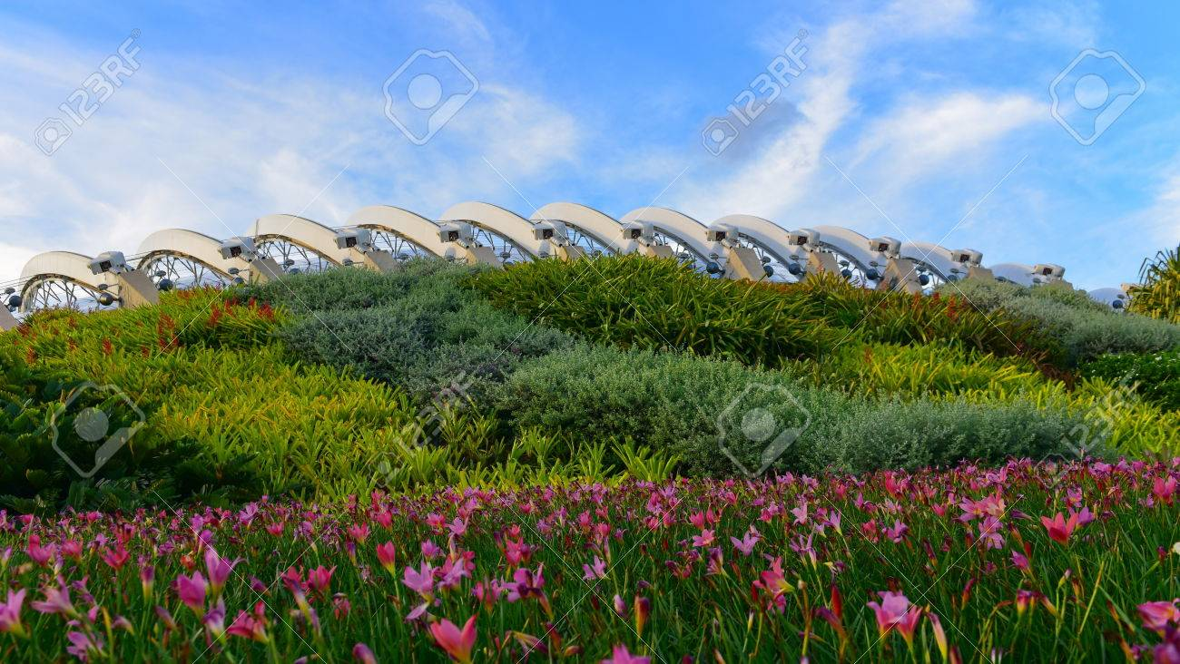 flower dome at gardens by the bay in singapore stock photo 42131110