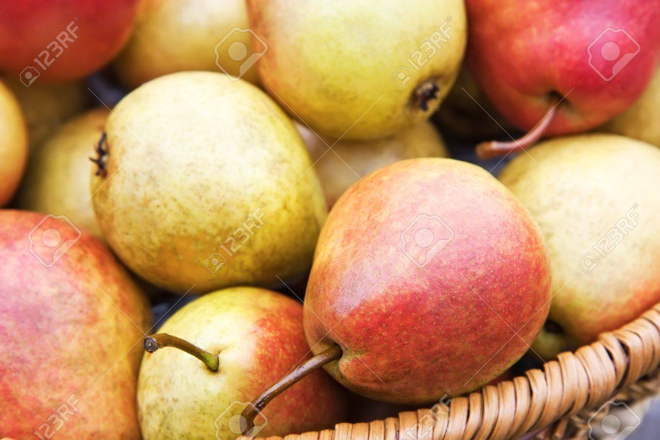 Fresh yellow and red pears as background Stock Photo - 15798208