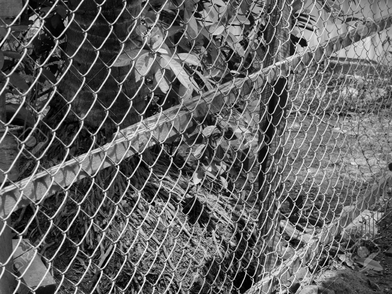 BLACK AND WHITE PHOTO OF CHAIN-LINK FENCE (ALSO REFERRED TO AS ...