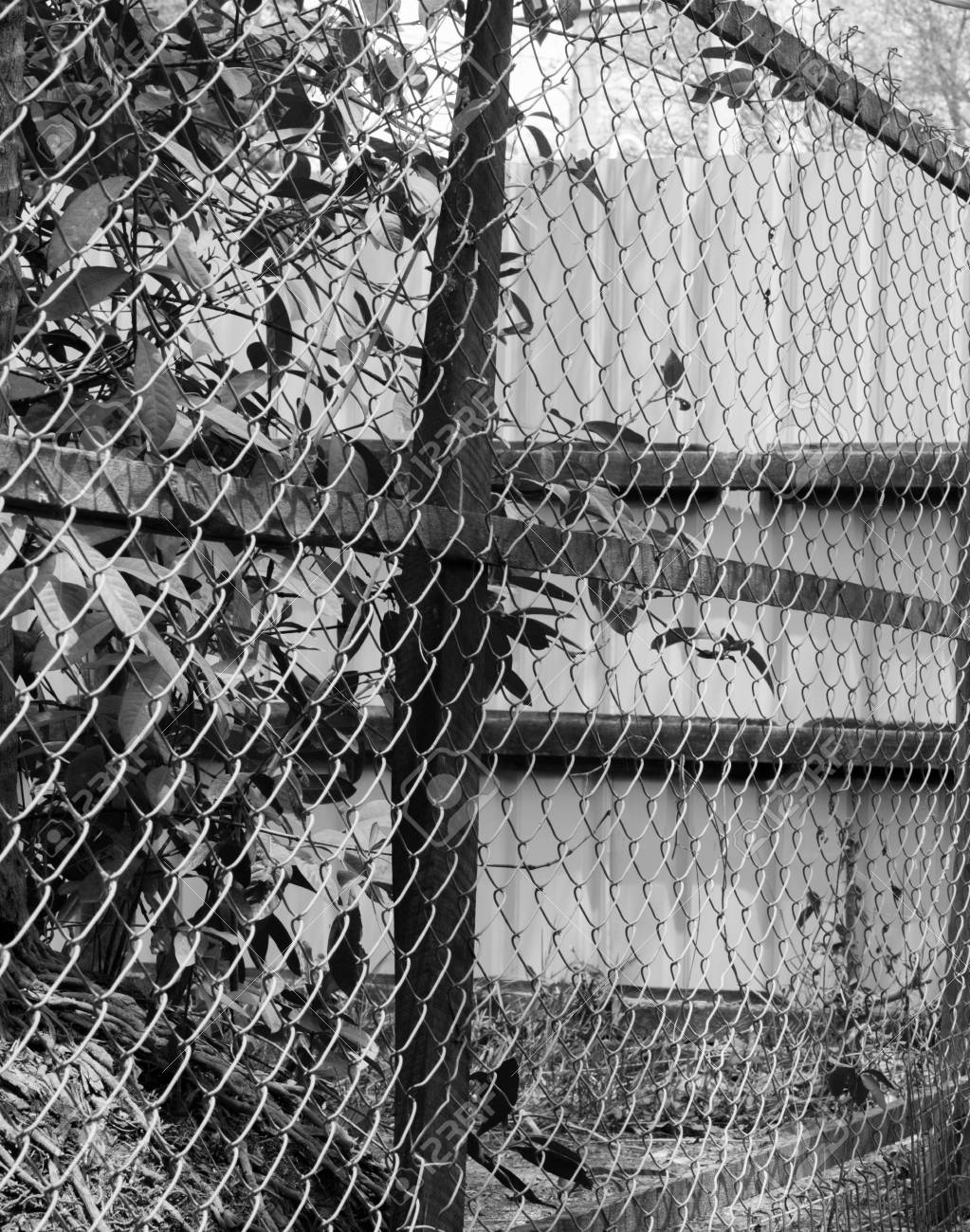 black and white photo of chain link fence also referred to as