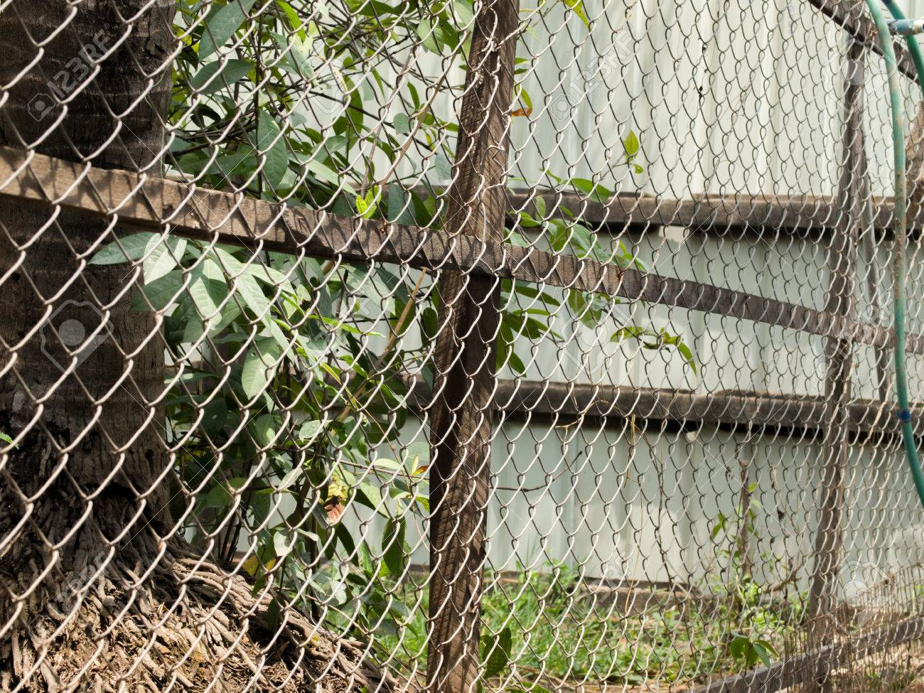 COLOR PHOTO OF CHAIN-LINK FENCE (ALSO REFERRED TO AS WIRE NETTING ...