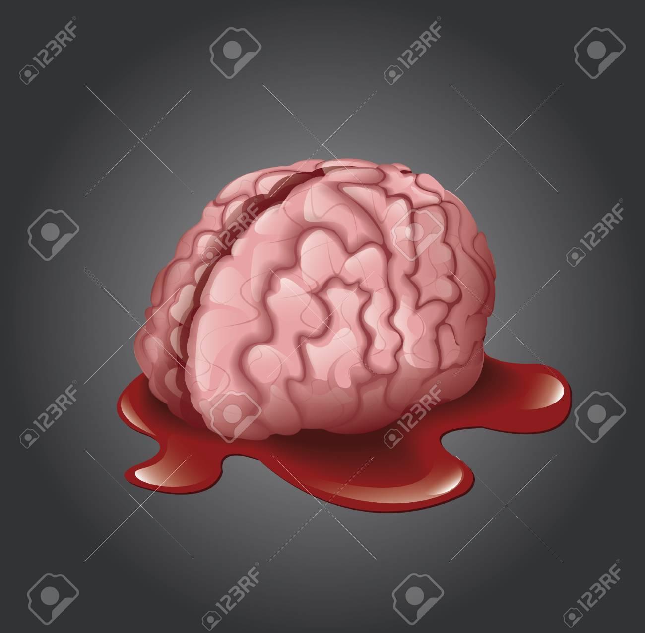 Brain Stock Vector - 22545913