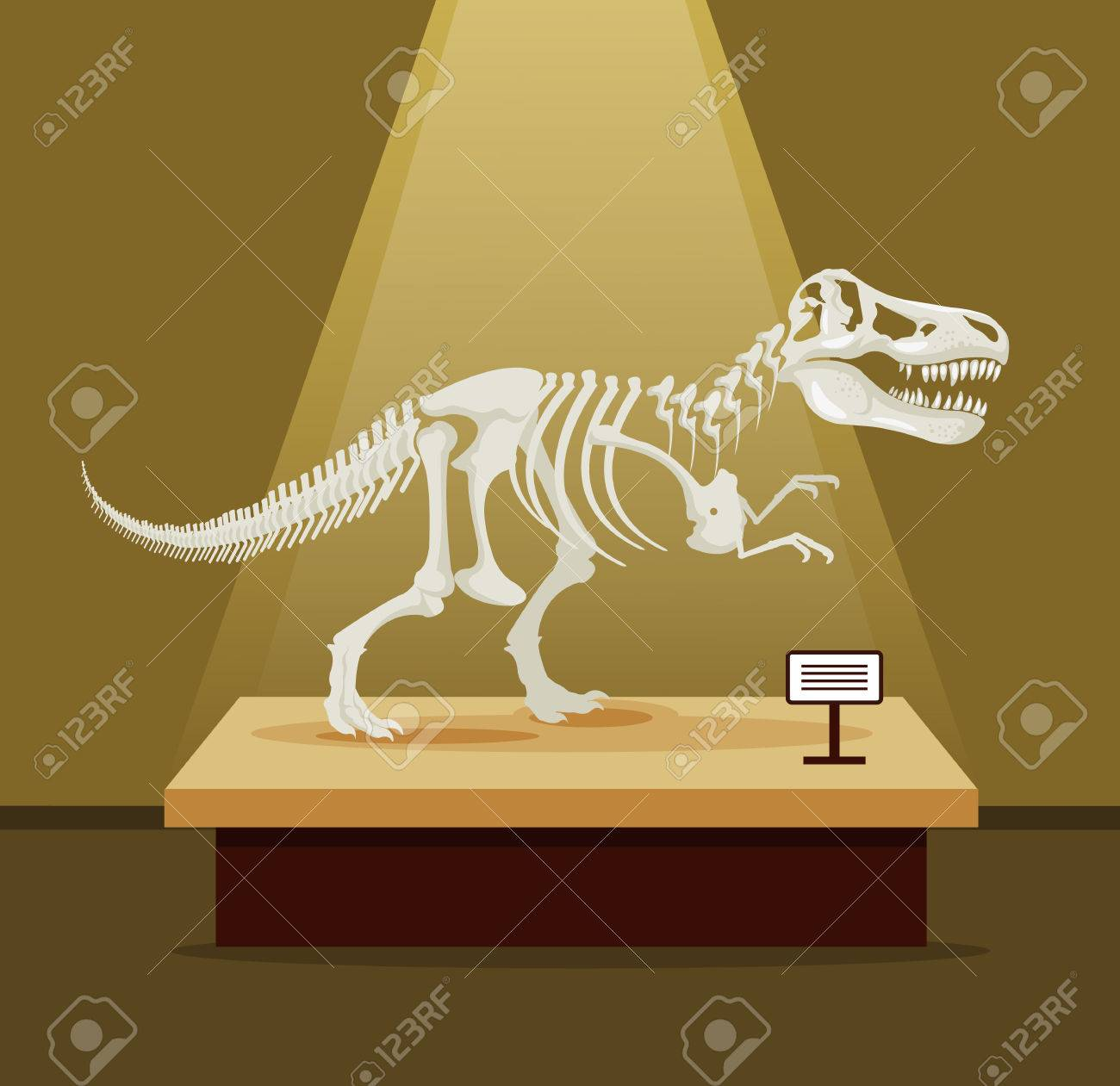 Tyrannosaur Rex bones skeleton in museum exhibition. Vector flat cartoon illustration. Dinosaurs museum - 57784016