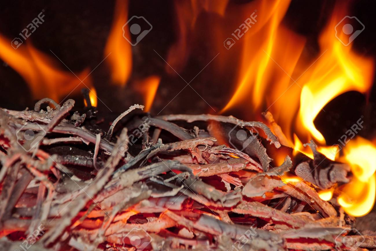 Burning wood in the fireplace and the flames Stock Photo - 13120824