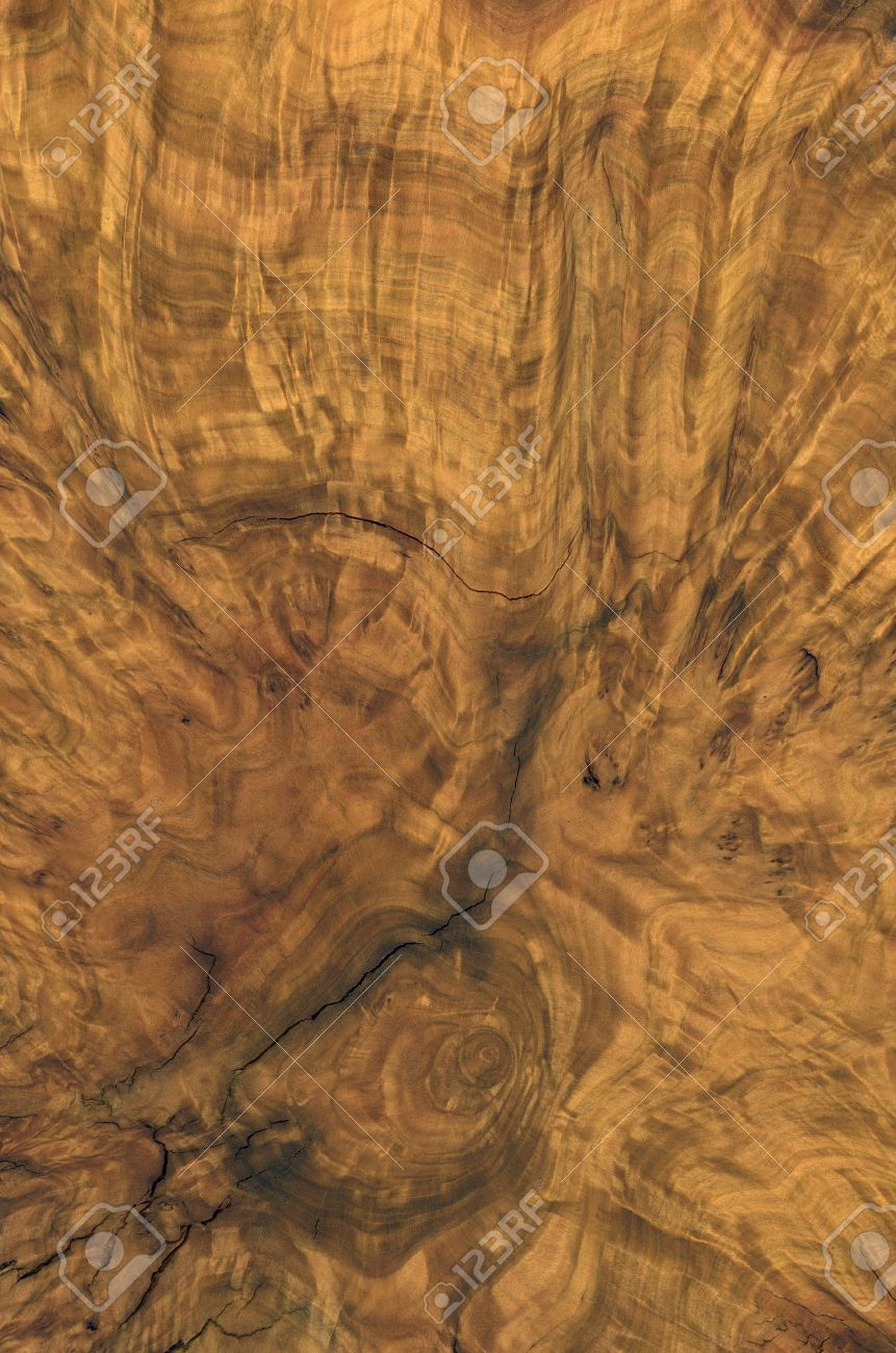 full frame abstract burl wood background Stock Photo - 10838755
