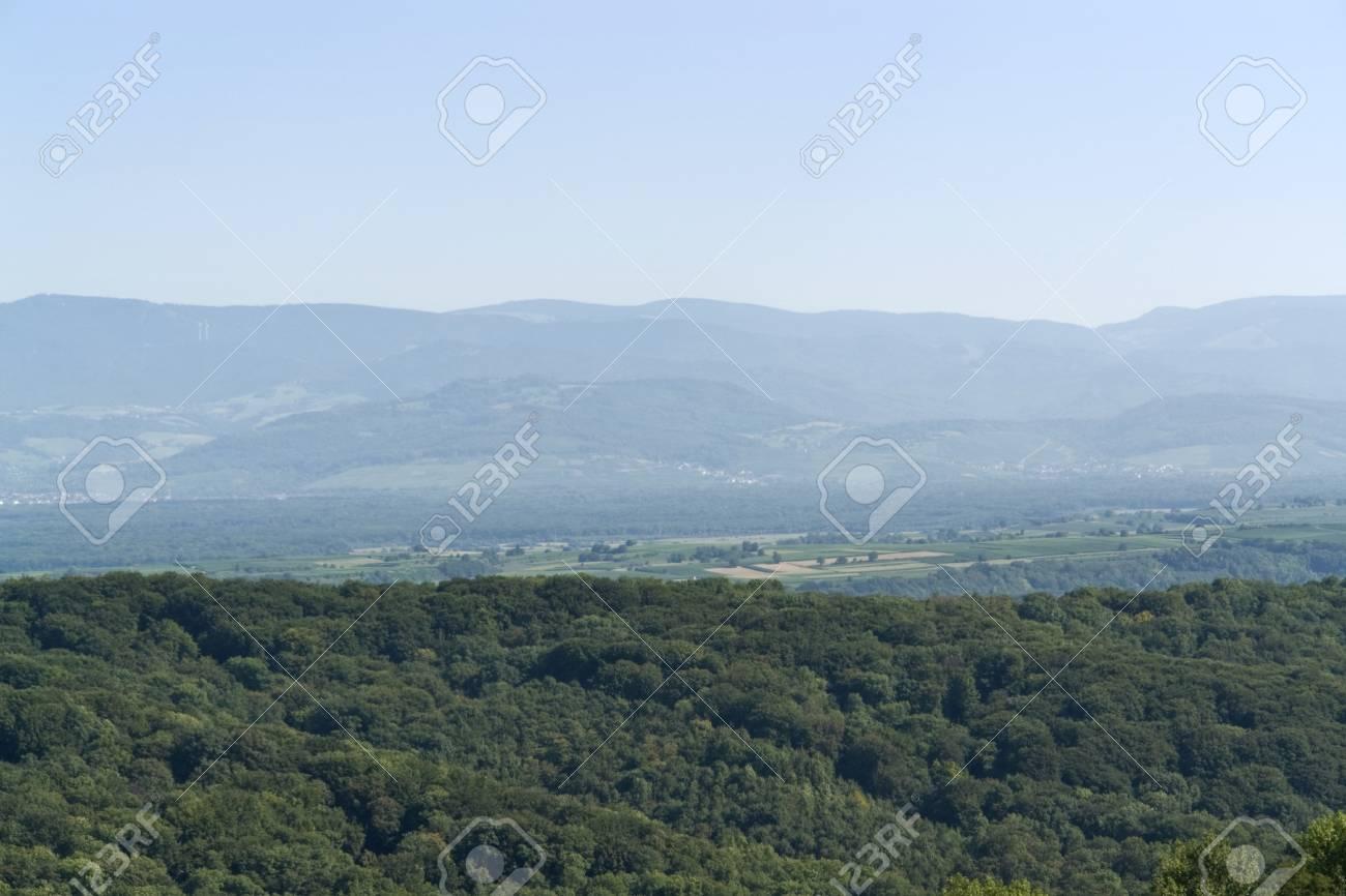 summertime scenery around the