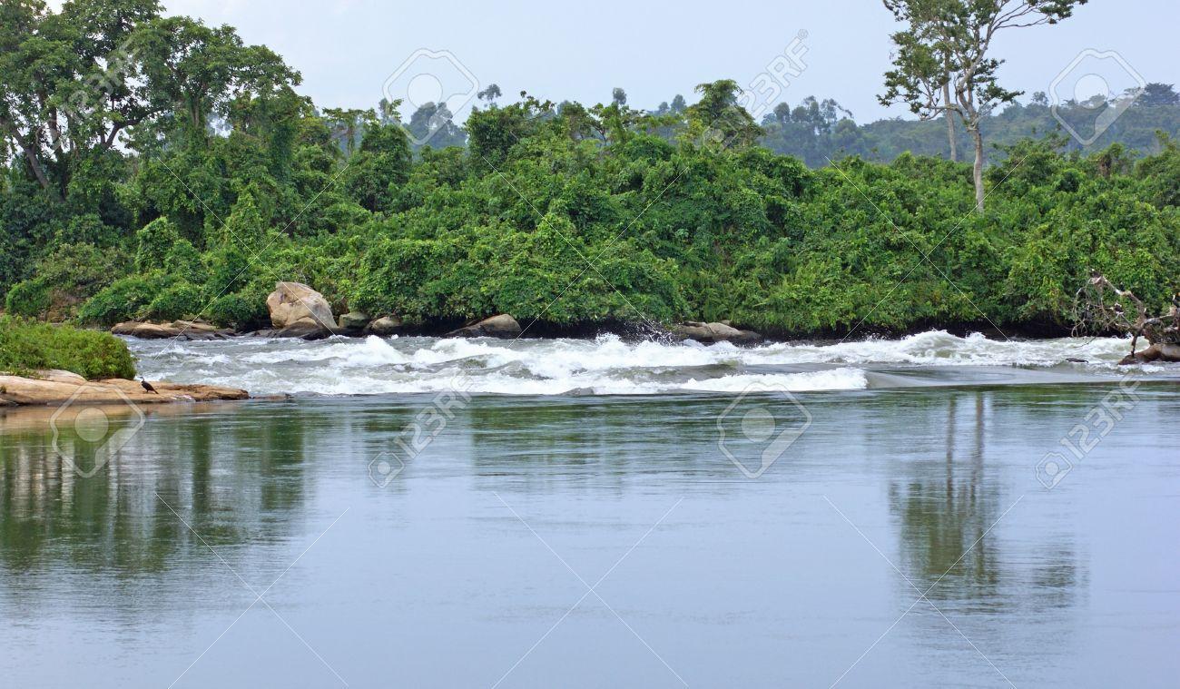 waterside scenery showing the River Nile near Jinja in Uganda (Africa) Stock Photo - 11041752