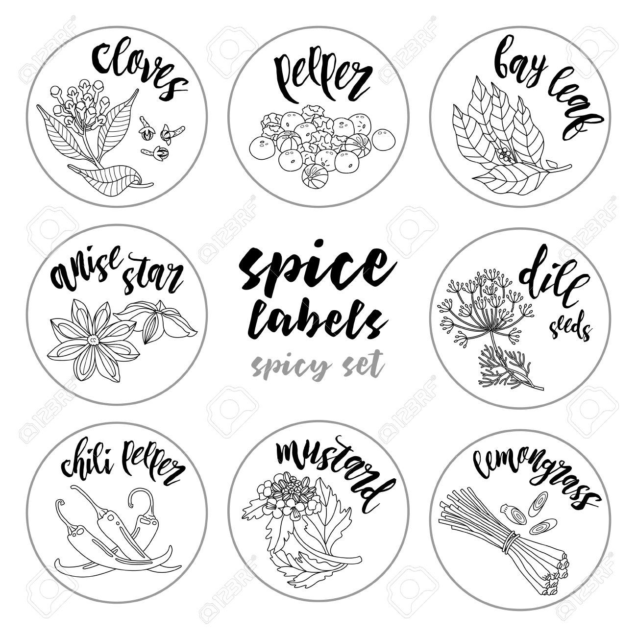 spices and herbs jar labels and stickers contour vector condiment