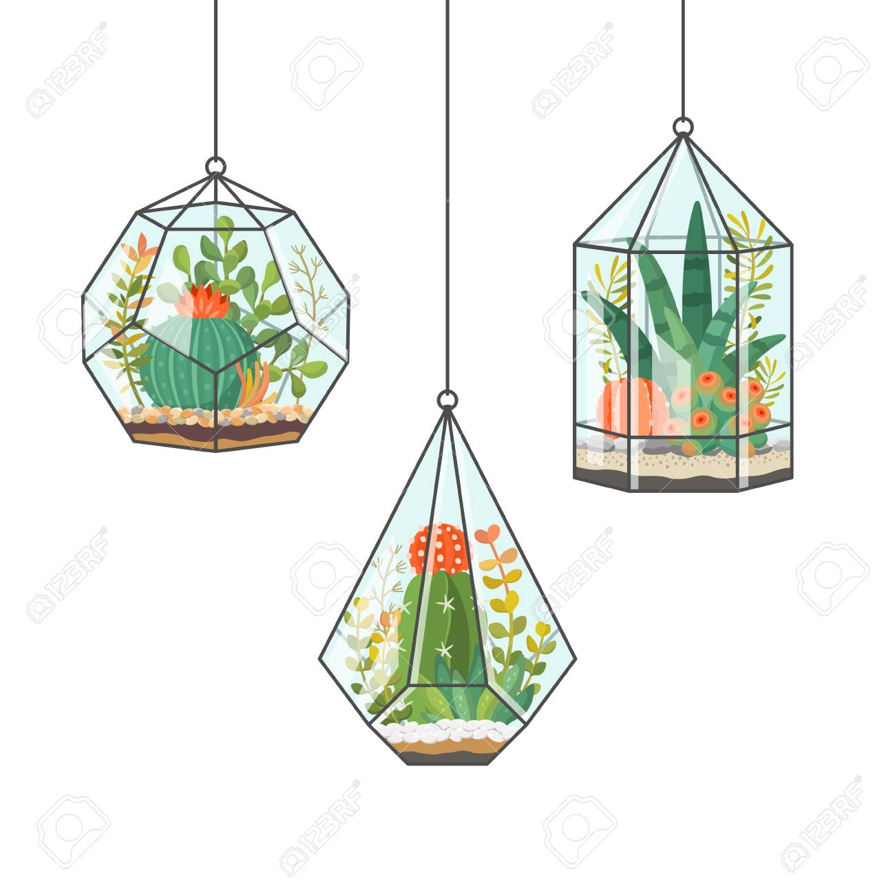 Tropical House Plants And Cactus In Hanging Terrariums Or Florariums Royalty Free Cliparts Vectors And Stock Illustration Image 111067136