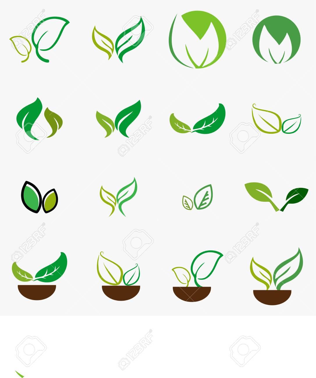 Leafplantlogoecologypeoplewellnessgreenleavesnature Symbol