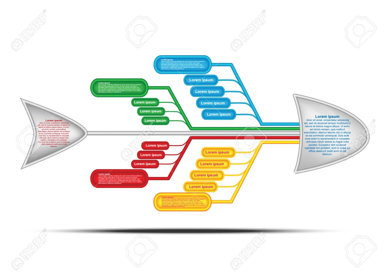 Fishbone Diagram Cause And Effect Diagram Vector Chart And
