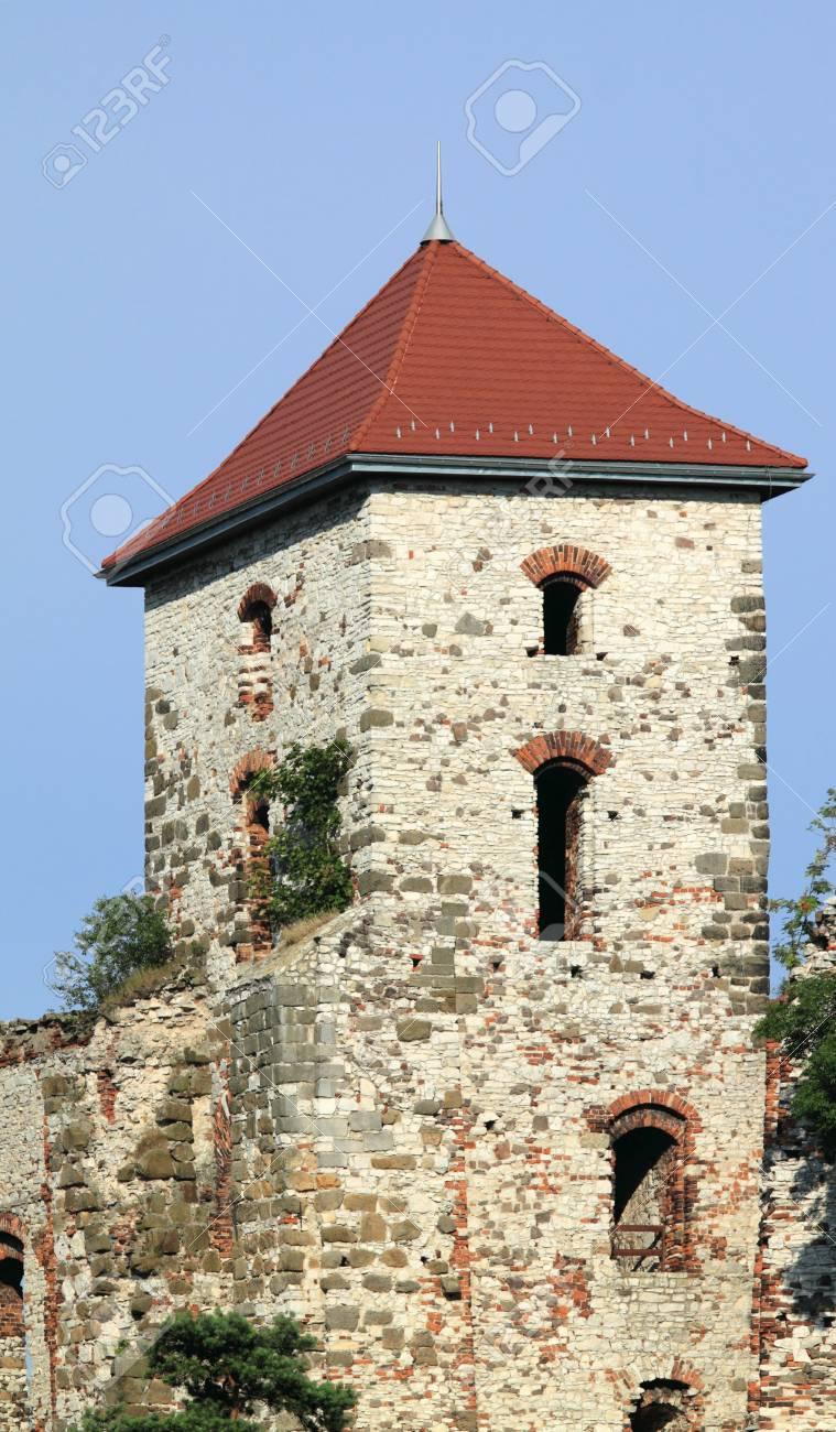 ポーランド - 城 Rudno (マウォ...