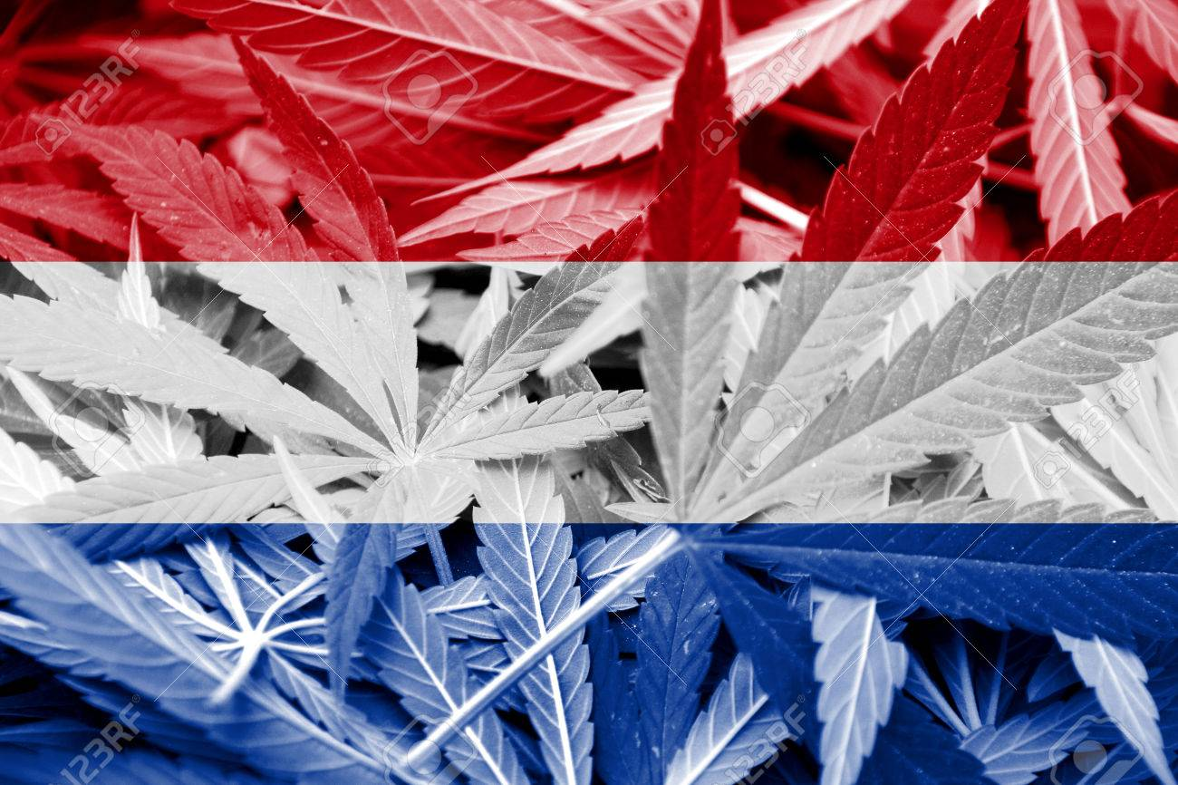 What year was cannabis legalised in holland?