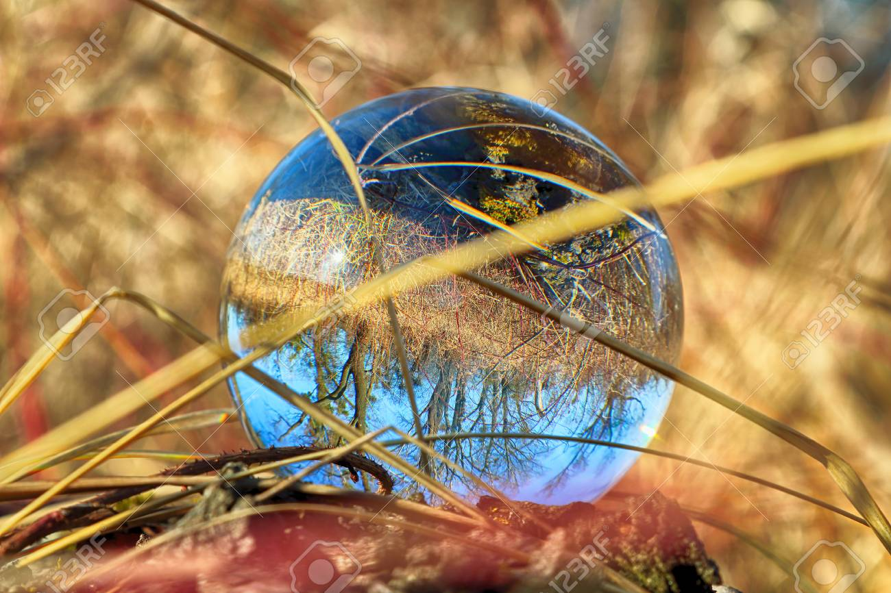 Wild Untouched Nature View Through A Glass Crystal Ball Lensball Stock Photo Picture And Royalty Free Image Image 119493562