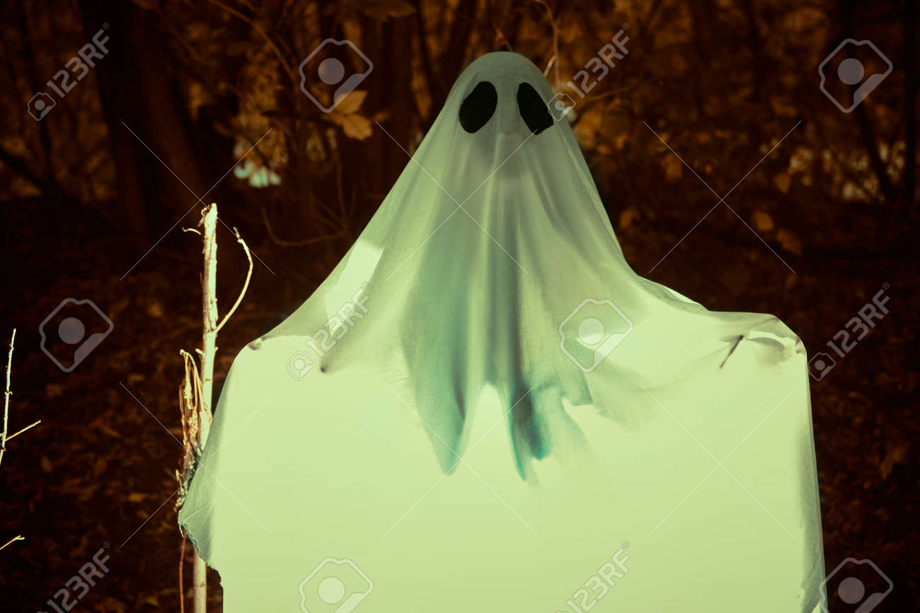 Halloween concept. A ghost under a white sheet in a dense gloomy forest. - 131194870