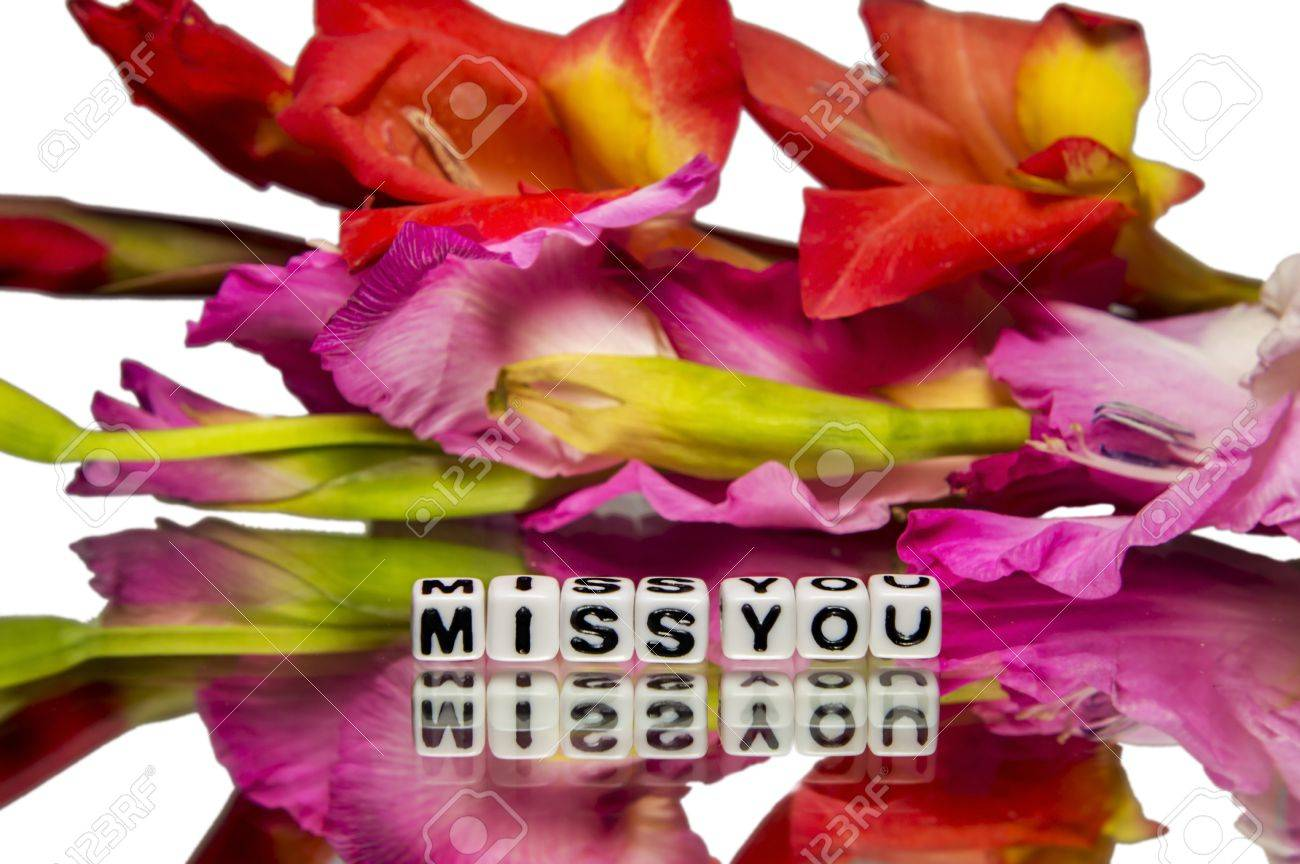 Miss You With Red And Pink Colored Flowers On White And Reflective ...