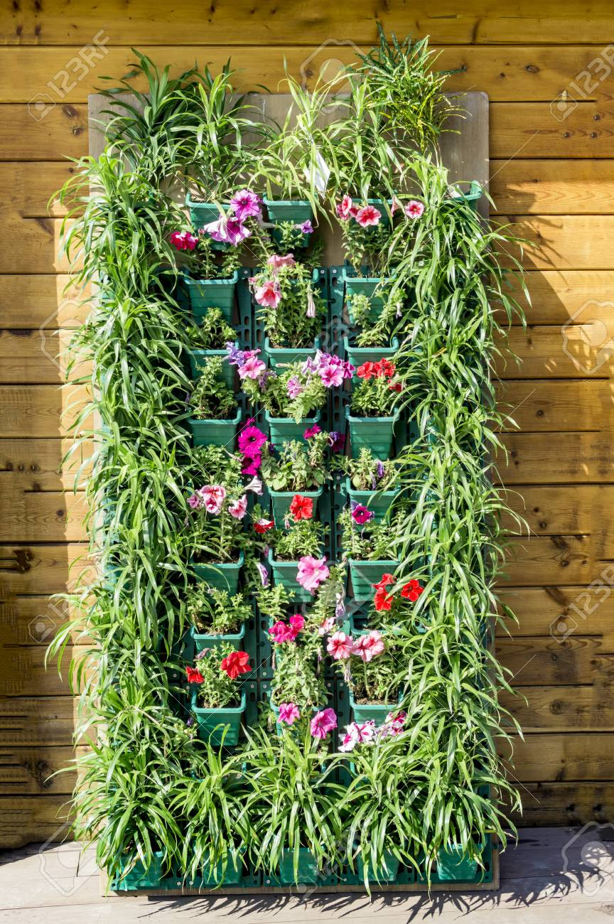 Vertical Wall Garden With Plastic Containers Stock Photo Picture