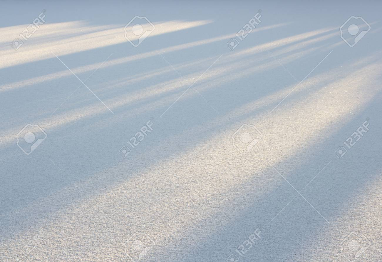 A snowy field and the sun's rays on the background of snow. - 50872931