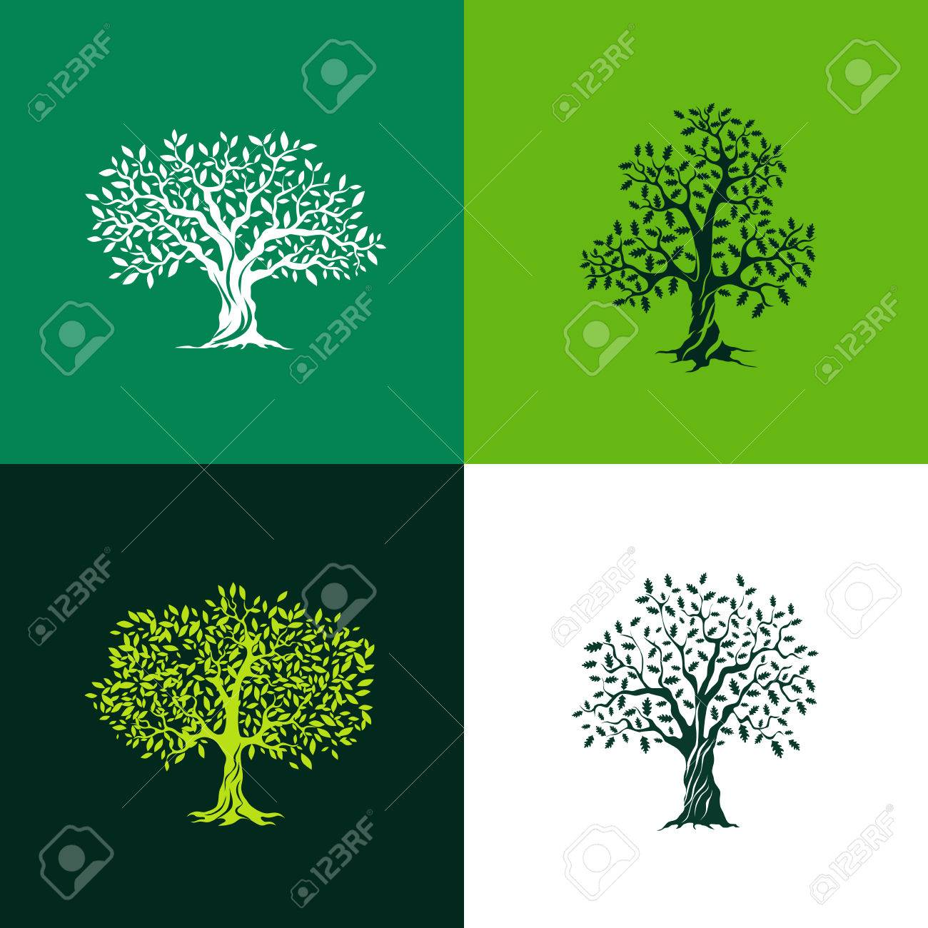 Beautiful oak and olive trees silhouette set on green background. Infographic modern isolated vector sign. Premium quality illustration logo design concept. - 53302738