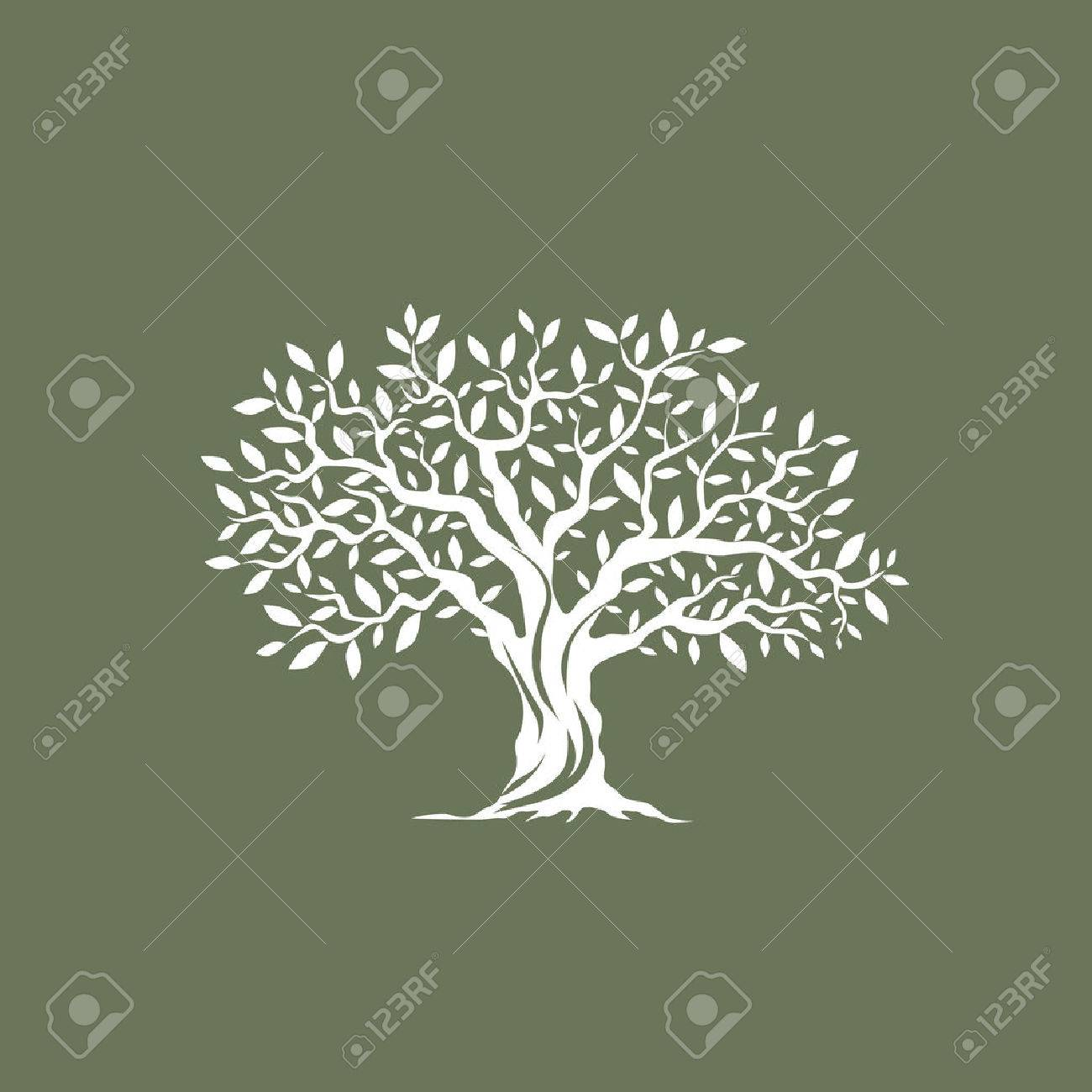 Beautiful magnificent olive tree silhouette on grey background. Infographic modern vector sign. Premium quality illustration design concept. - 58210537