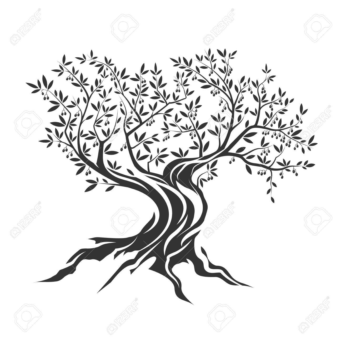 Olive tree silhouette icon isolated on white background. - 63275346