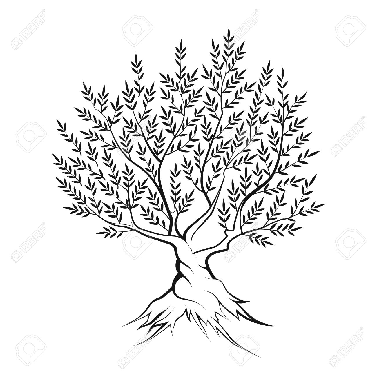 Olive Tree Outline Silhouette Icon Isolated On White Background