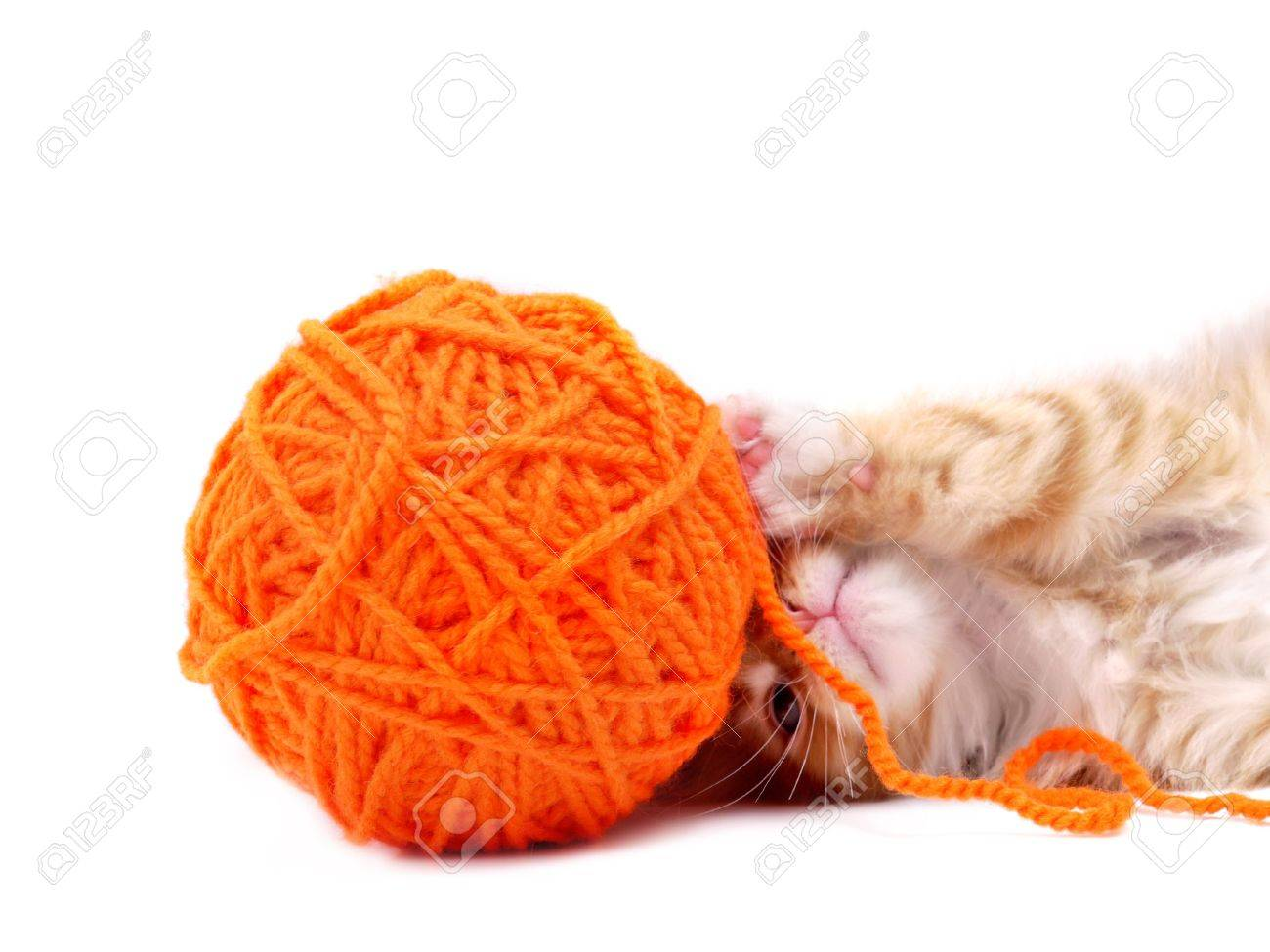 Kitten playing with orange ball of wool shot over white background Stock Photo - 4897868