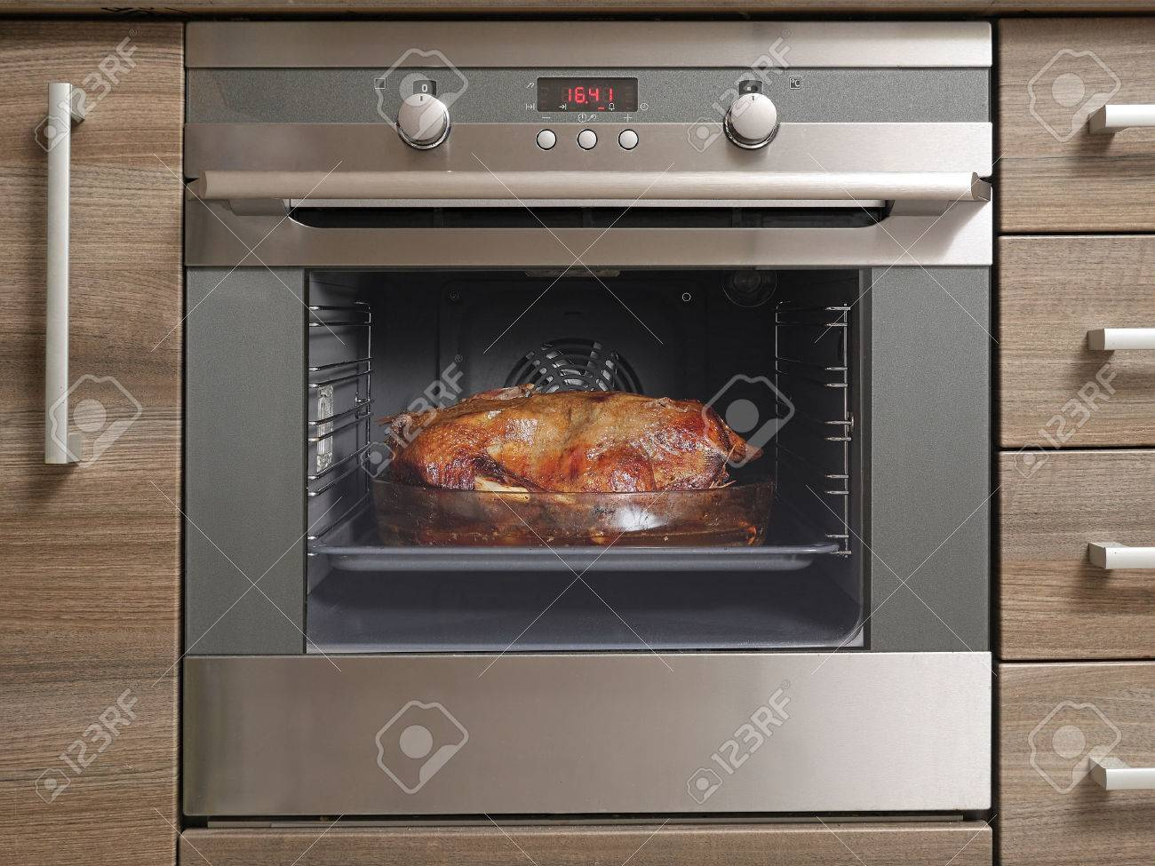 Traditional Polish goose roasted in the roaster oven Stock Photo - 29392681