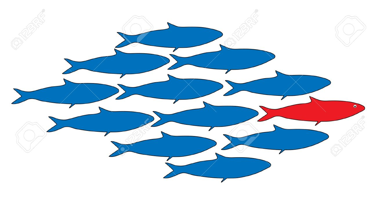 school of fish with a leader, vector illustration Stock Vector - 29299495