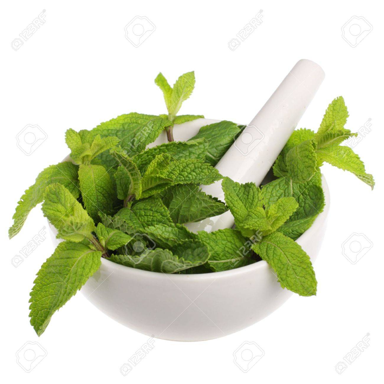 Mortar with mint isolated on white background Stock Photo - 7079035