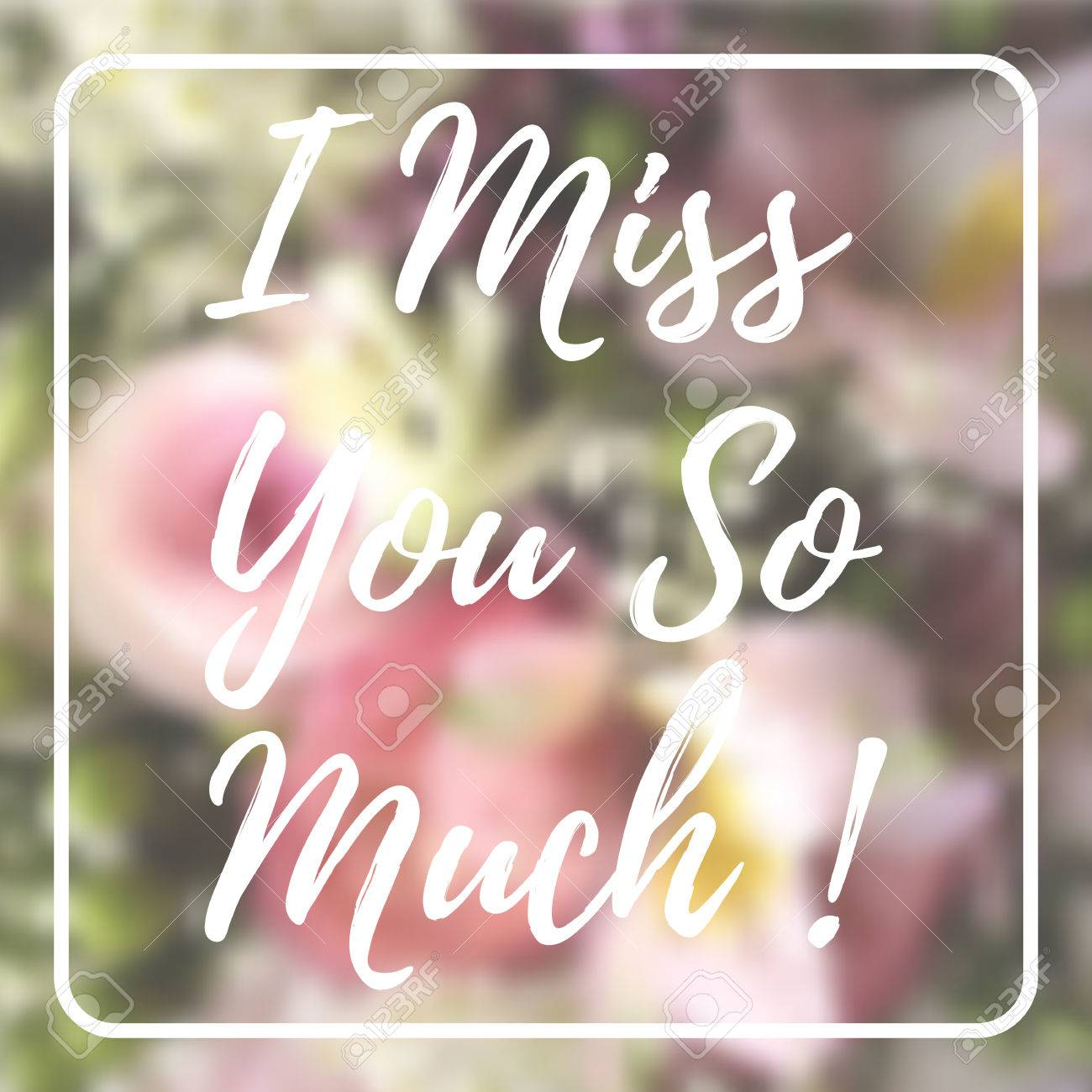 I Miss You So Much Card On Blurred Flowers Background Royalty Free