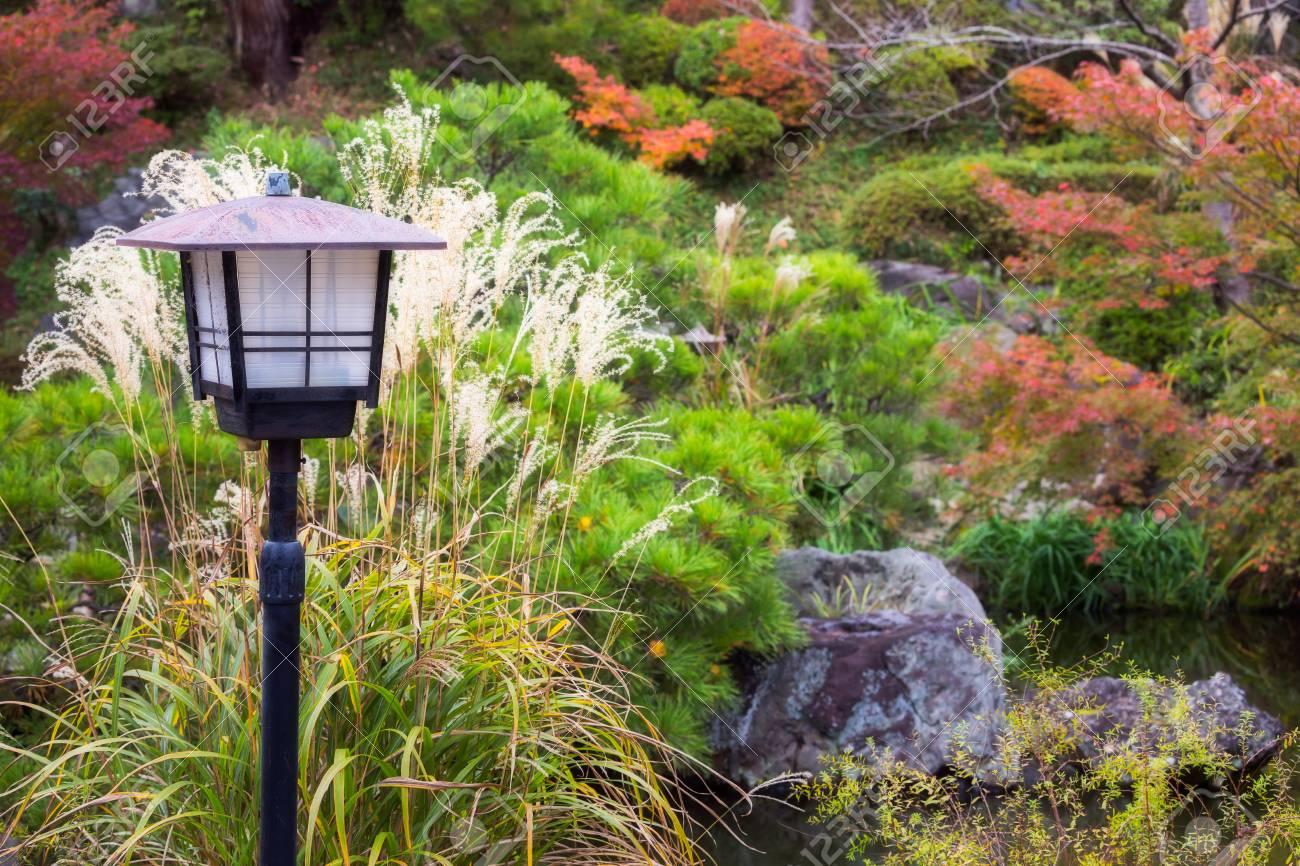 Lampe Vintage Dans Le Jardin Japonais Avec Erable Rouge Arbre Fond A