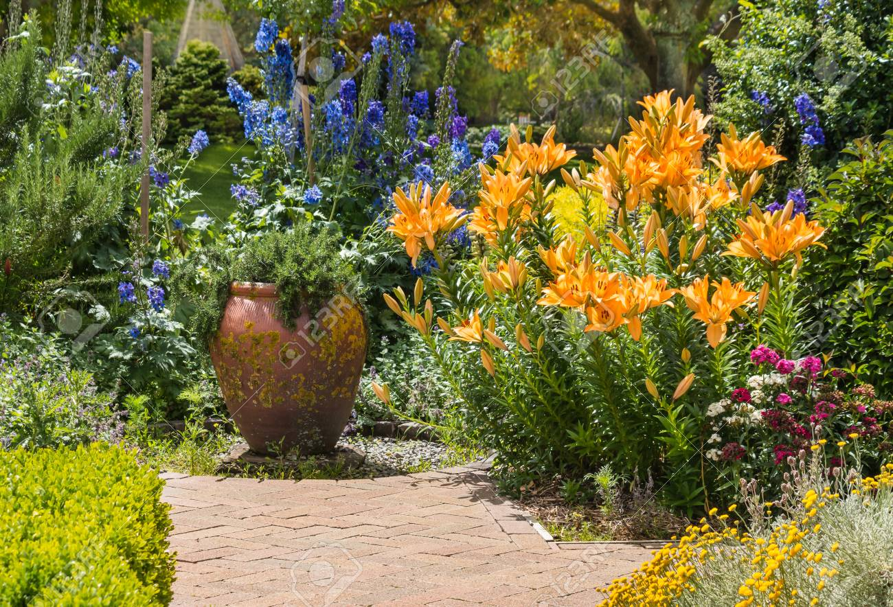 Collection Of Garden Flowers In Bloom In English Garden Stock