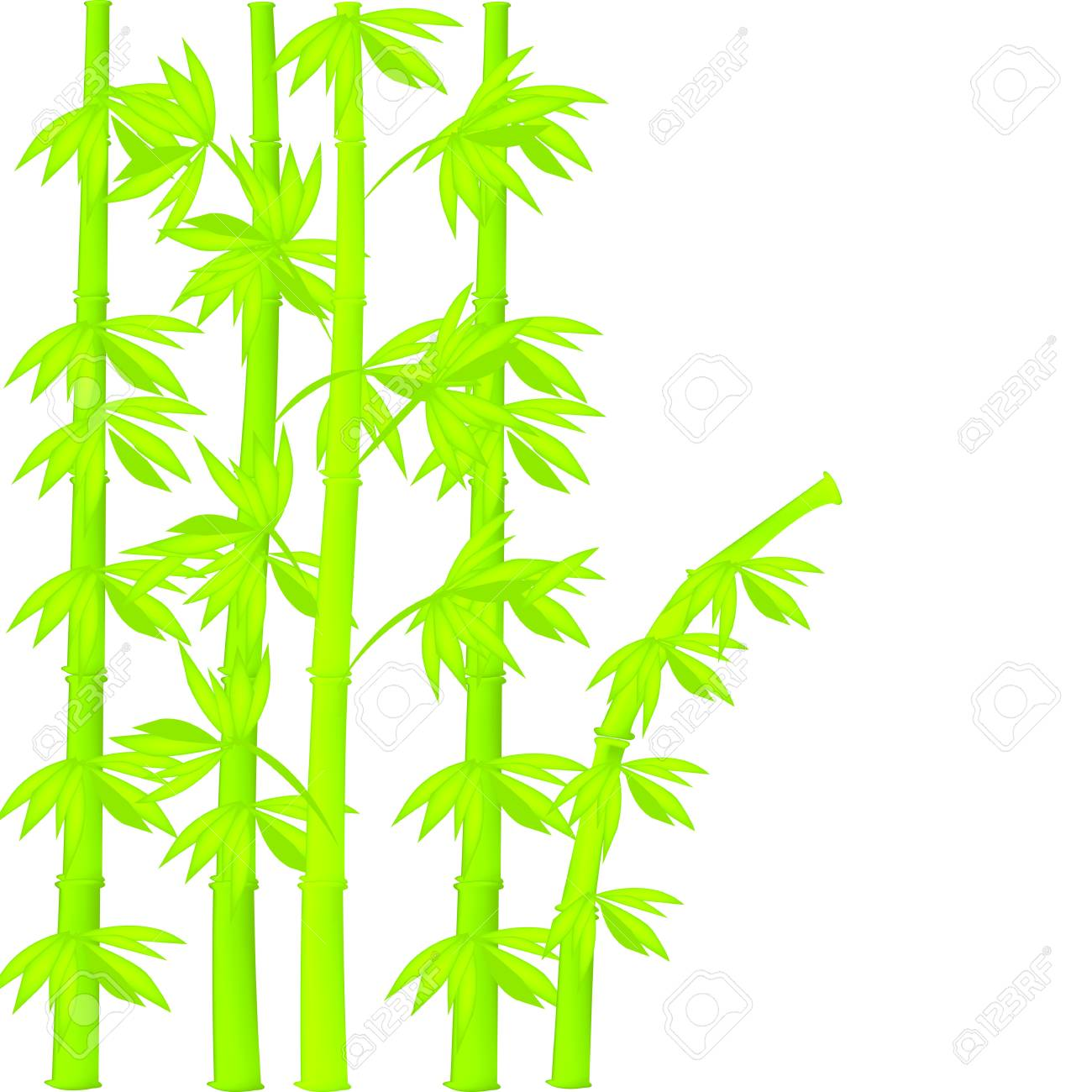 Bamboo illustration Stock Vector - 11958189