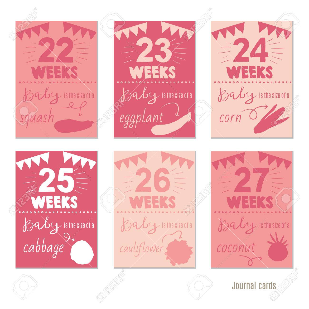 Pregnancy 12 Weeks Vector Design Templates For Journal Cards Scrapbooking Greeting