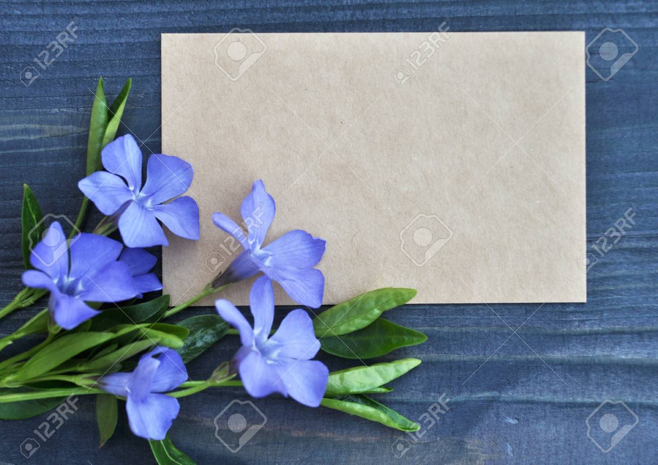 Empty paper list and bouquet of blue flowers on wood background empty paper list and bouquet of blue flowers on wood background stock photo 96775798 izmirmasajfo