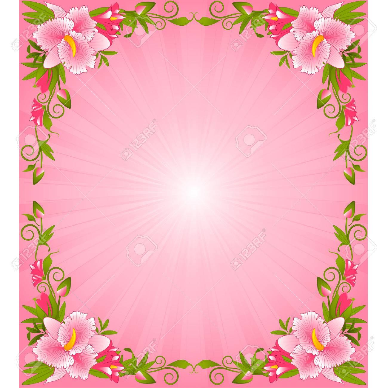 Images pretty flower borders beautiful frangipani flowers source mightylinksfo