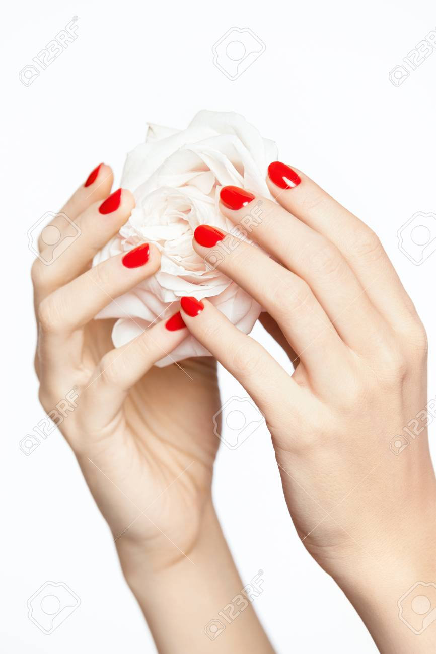Red Nails Woman Hands With Flower And Manicure Close Up Of Female